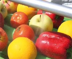 ozonowanie owoców, ozonowanie warzyw